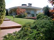 idee giardino: ravvivare e abbellire il giardino con le piante ... - Come Abbellire Il Giardino Di Casa