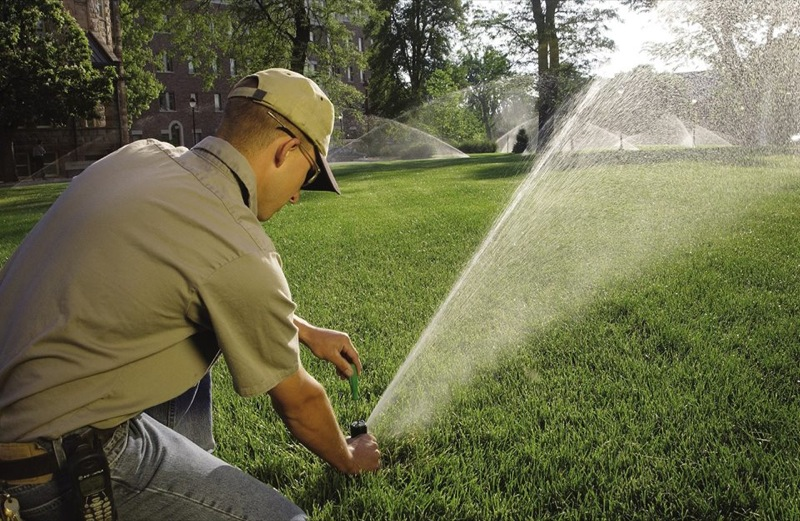 Irrigare il prato in estate quando e - Quando seminare erba giardino ...